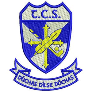Tallaght Community School